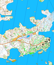 Photo: Blue lines? A part of a Karttapullautin map created from the open data of the National Land Survey of Finland