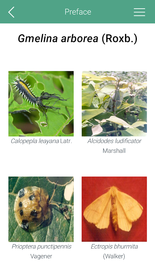 Tree Pests of INDIA- screenshot