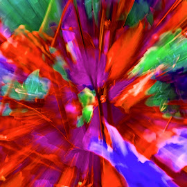 by Jim Jones - Abstract Patterns ( art, color, patterns, design, abstract )
