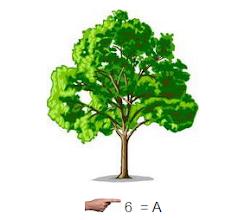 Photo: Дерева