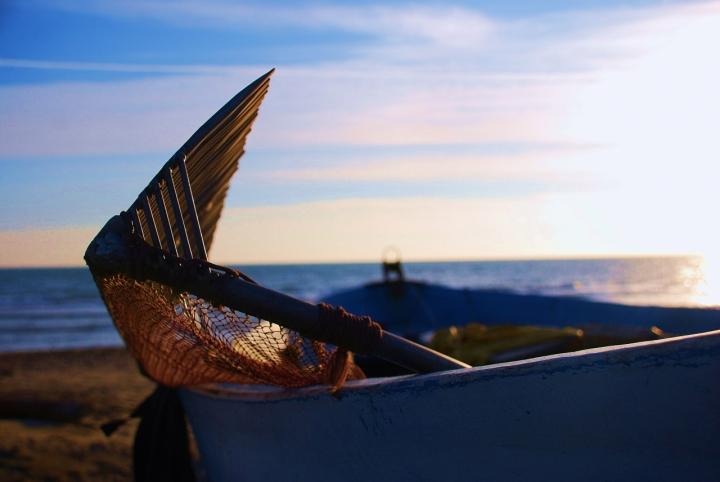 L'arte della pesca di mayre