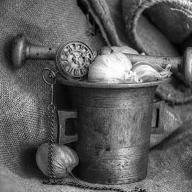 by Biljana Nikolic - Black & White Objects & Still Life