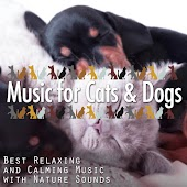Music for Cats & Dogs: Best Relaxing and Calming Music with Nature Sounds