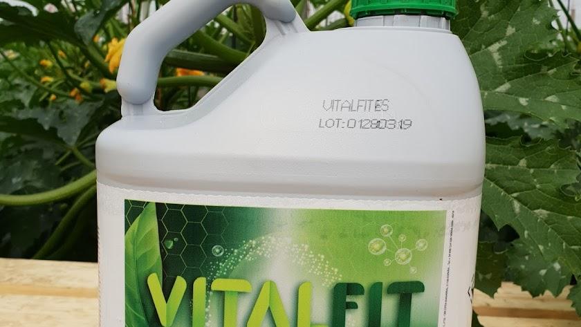 Imagen del producto Vitalfit.