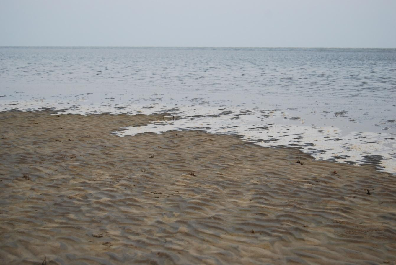 http://www.destinationindia.co.in/gifs/chandipur-beach.jpg