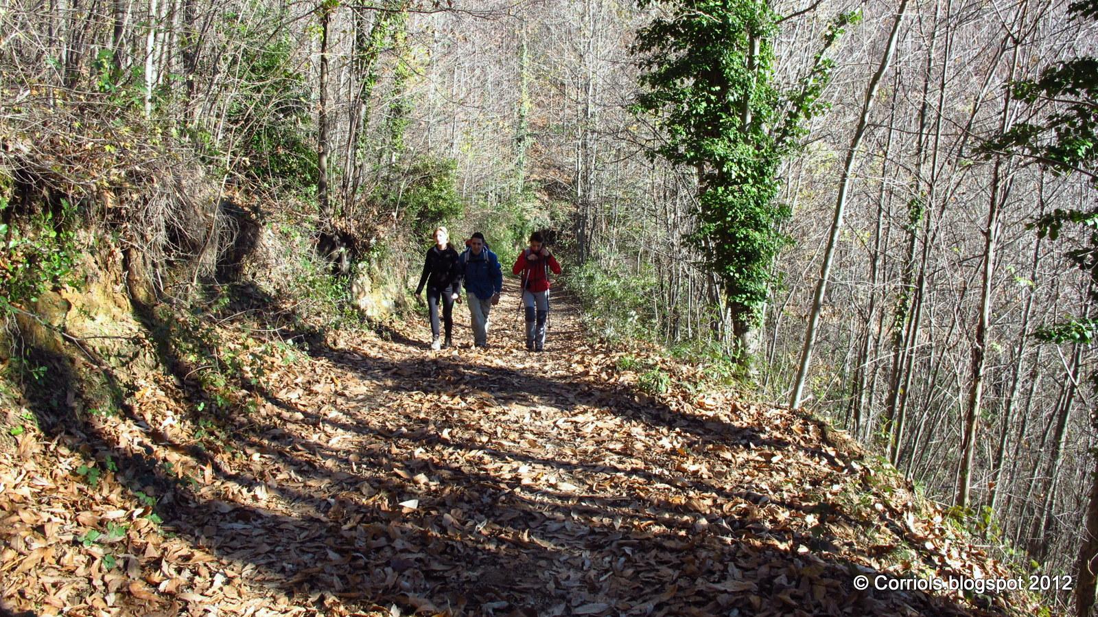 Photo: Principi de la ruta
