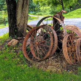 Wheels by Sandy Considine - Artistic Objects Antiques