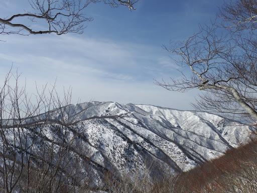 左手に横山岳と歩いてきた稜線