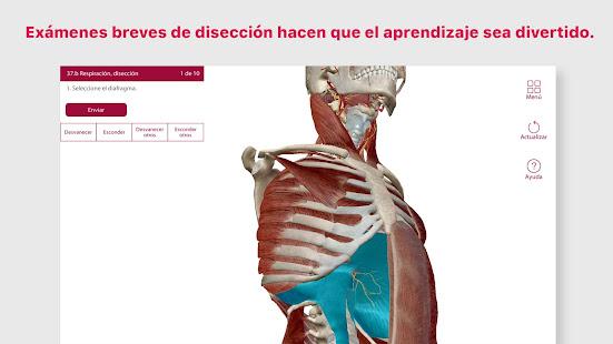 Descargar Anatomía & Fisiología APK 5.1.10 APK para Android ...