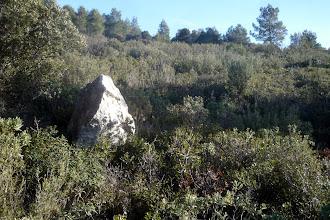 Photo: Un récif calcaire.