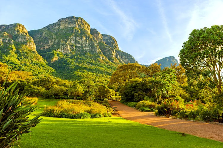 Kirstenbosch National Botanical Garden in Cape Town is one of the city's foremost tourist attractions.