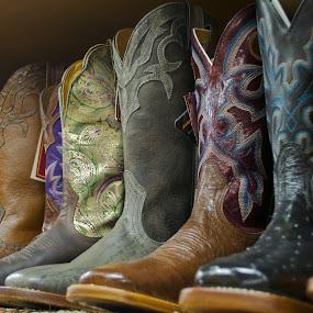 cowboy boots up close by Heather Diamond - Artistic Objects Other Objects ( shoes, cowboy boots, cowboy, patterns, purple, colorful, green, fun, stock show, women, farm, woman, diamond photo gallery, brown, boots, black )