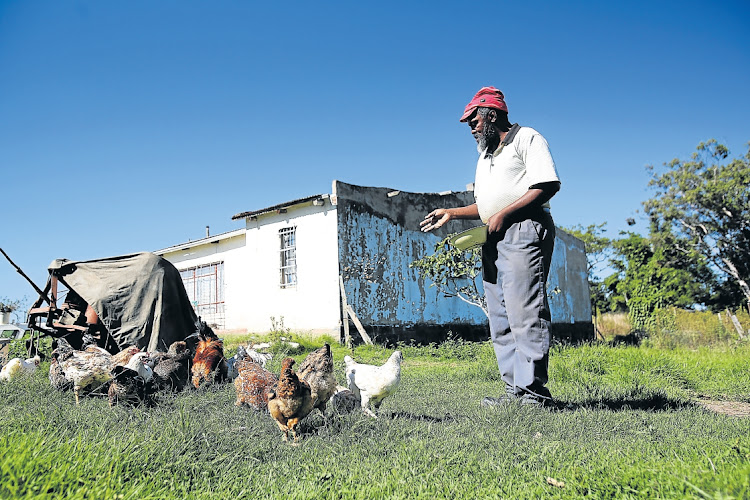 For some, farming remains a far-off dream as the state land reform and recapitalisation programmes have been hijacked by the greedy and powerful. Picture: MARK ANDREWS/DAILY DISPATCH