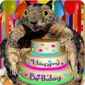 Have a Squishy Birthday