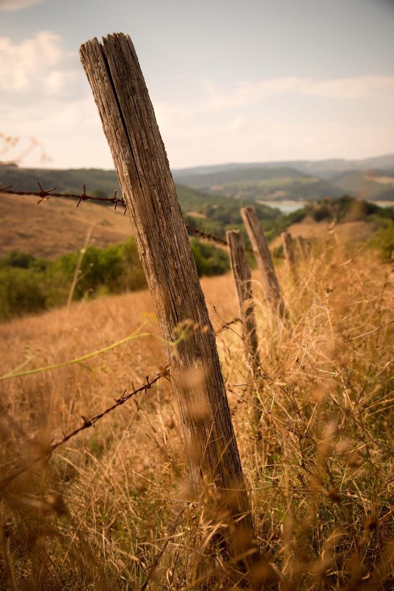 recinzione di stefano.serranti