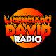 Licenciado David Radio Download for PC Windows 10/8/7