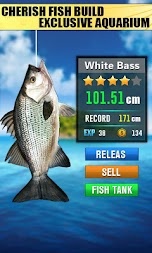 New Fishing Hit - 3D Free Fishdom APK screenshot thumbnail 2