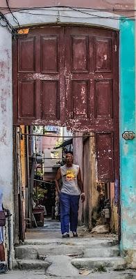 Portoni chiusi ... aperti 😅 di Renata Roattino@jhonninaphoto