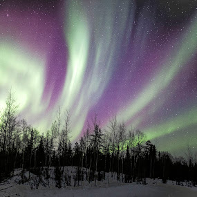 Northern Lights by Heather Campbell - Landscapes Starscapes ( nature, night photography, stars, aurora borealis, aurora, northern lights, astrophotography, long exposure, landscape,  )
