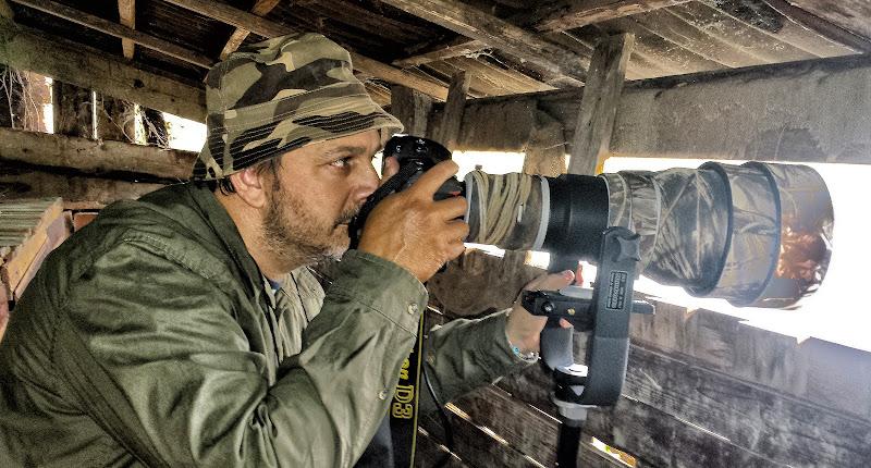 fotografo naturalista di massimo zanotti