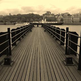 by Luis Antunes - Buildings & Architecture Bridges & Suspended Structures
