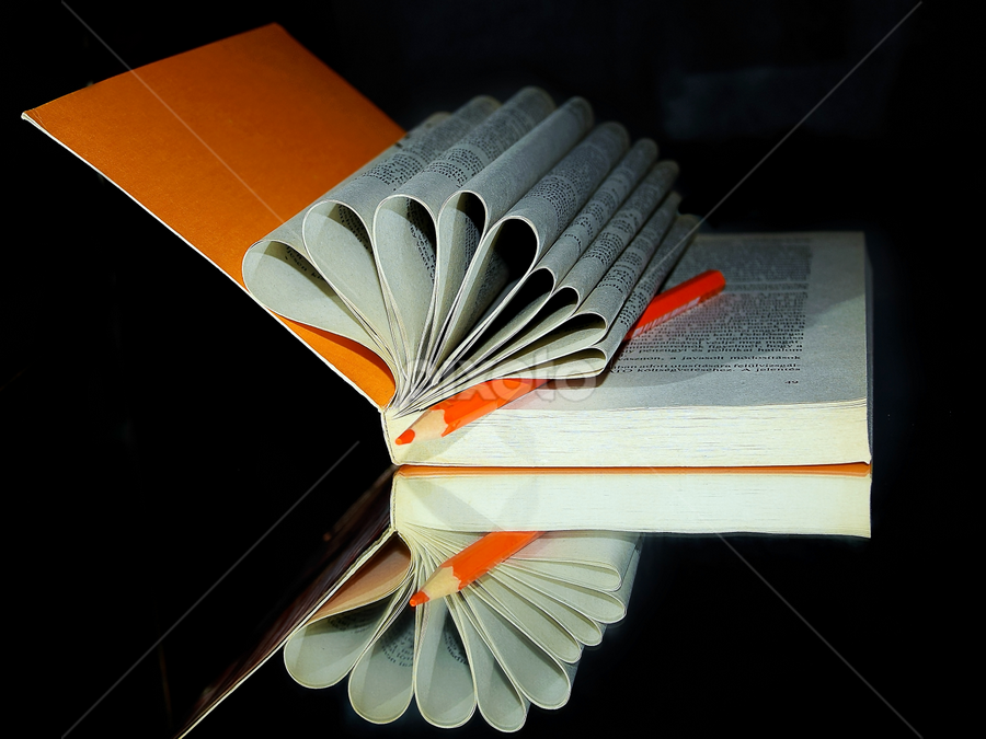 book with the pen by LADOCKi Elvira - Artistic Objects Other Objects (  )