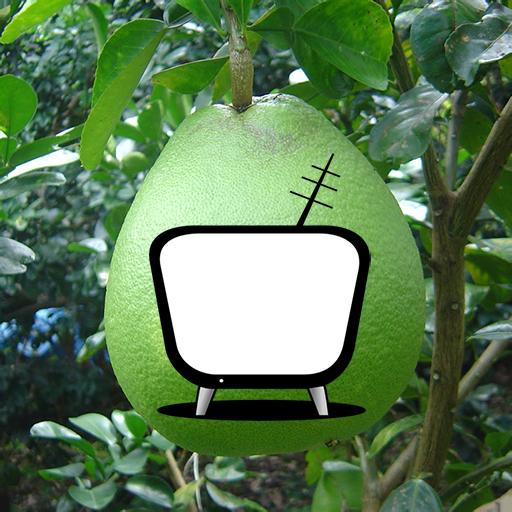 Xem Tivi Không Cần Mạng - Miễn Phí Trực Tiếp Bóng