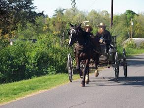 Photo: Amish Horse & Buggy