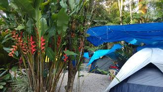 Padang Surf Camping em Itamambuca, Ubatuba 11