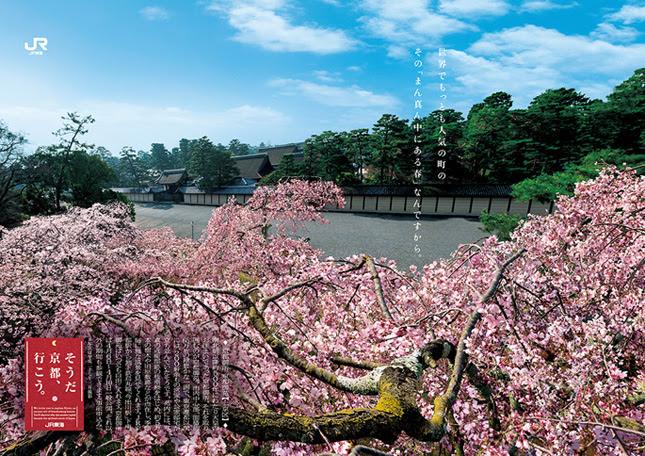 京都御苑 そうだ京都、行こう。