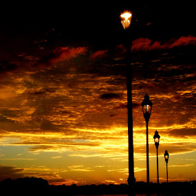 Twi-Lights by Barb Moore - City,  Street & Park  Skylines ( lights, water, twilight, lamppost, sunrise, night, color, colors, landscape, portrait, object, filter forge, silhouette, Lighting, moods, mood lighting,  )