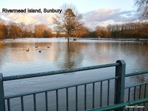 Photo: Rivermead Island, Sunbury