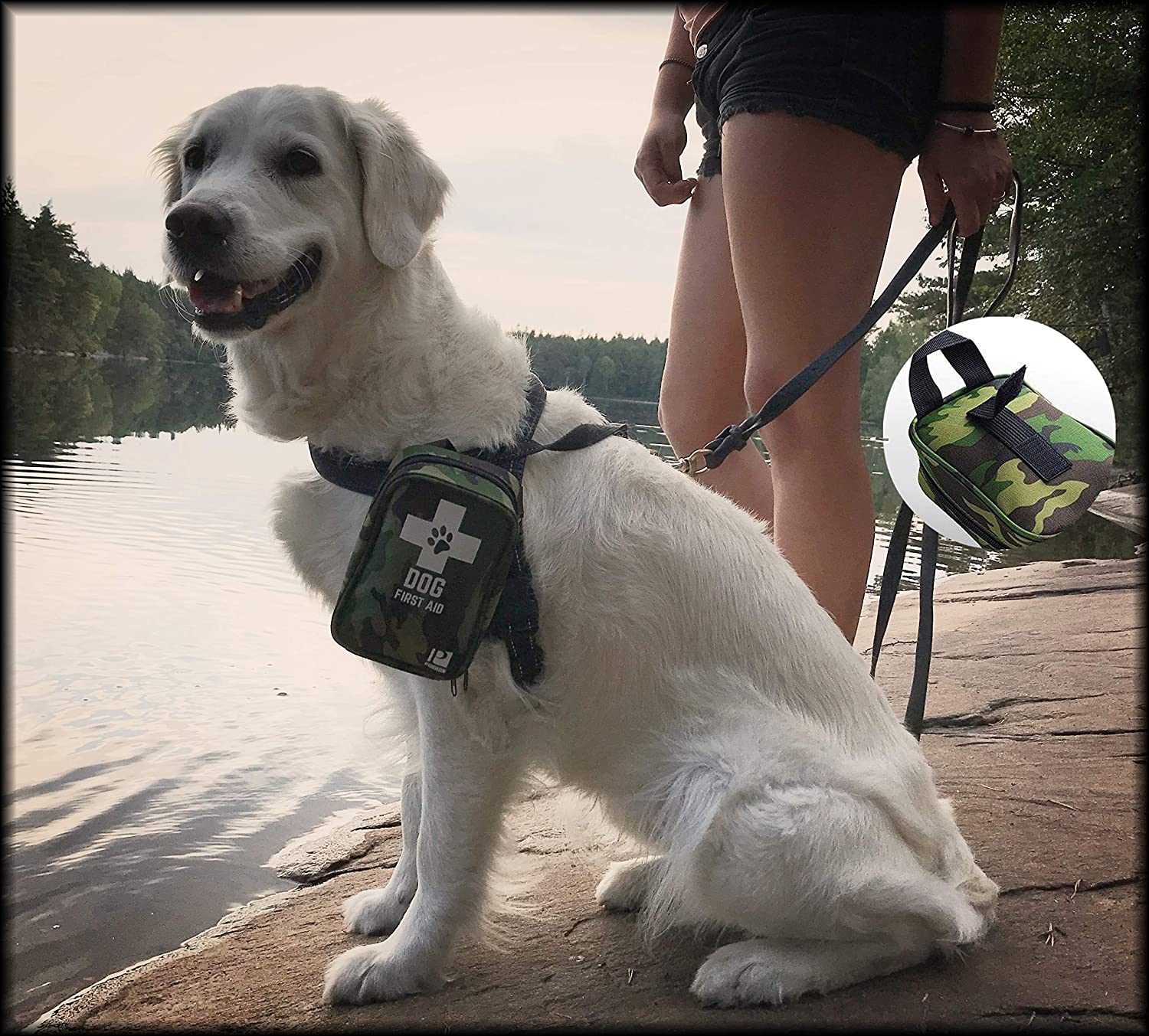 Smiling dog at a lake wearing a camouflage dog first aid kit