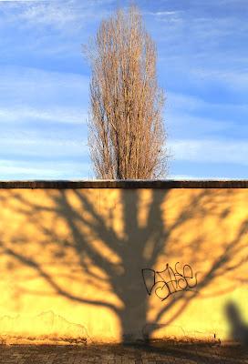 OGNI MURO PRIMA O POI CADE  (dal Muro di Berlino) di FZATOX