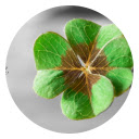 St. Patrick's Day HD Popular Festivals Theme Icon