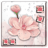beauty pink peach blossom theme pink wallpaper