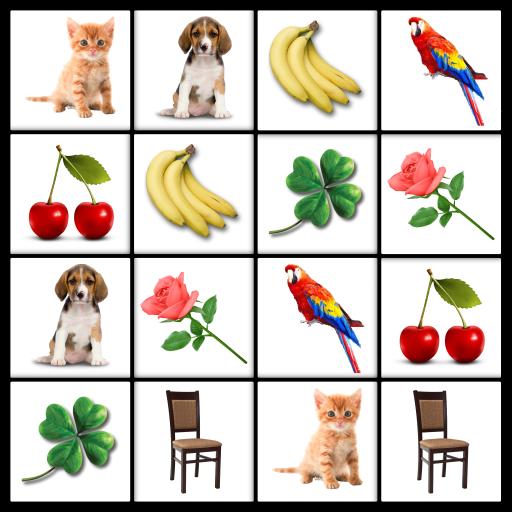 Brain game. Picture Match. Icon