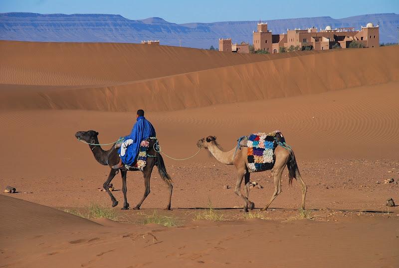 Viaggiare nel deserto di Clara