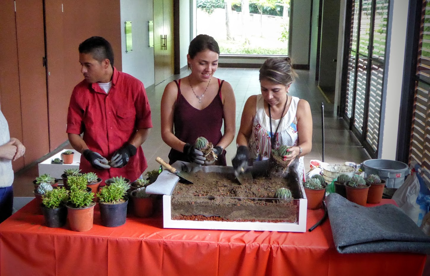 Formación en cubiertas vegetales en Colombia