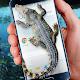Crocodile in Phone Big Joke Download for PC Windows 10/8/7