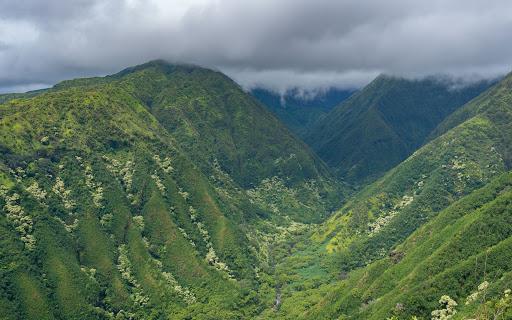 Waihee Ridge