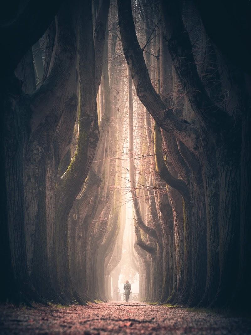 Il mio tunnel di maxlazzi