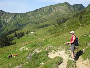 Photo: Wanderung zum Walmendinger Horn - Lüchle Alm