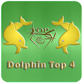 Dolphin Top 4 Evolution