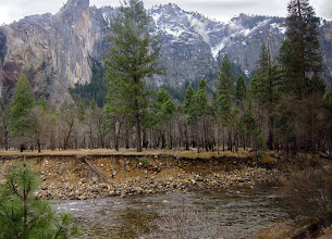 Photo: Merced River, from moving shuttle, Day 2, S95. #3554