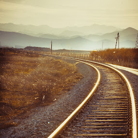 Railway  by Zoran Savic - Transportation Railway Tracks ( railway, fog, train, transportation, sun )