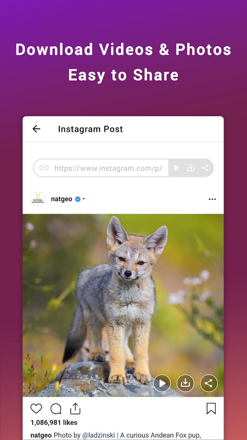 Friendly for Instagram Screenshot 3