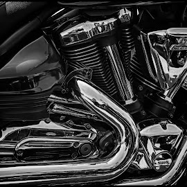 by Dave Lipchen - Black & White Objects & Still Life ( engine )