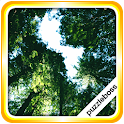 Jigsaw Puzzles: Trees