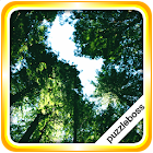 Jigsaw Puzzles: Trees icon